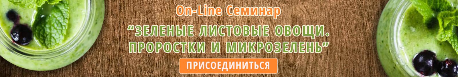 On Line Seminar